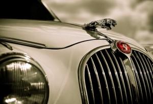 логотип ягуару на автомобілі