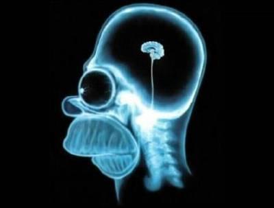 Лінь мозку