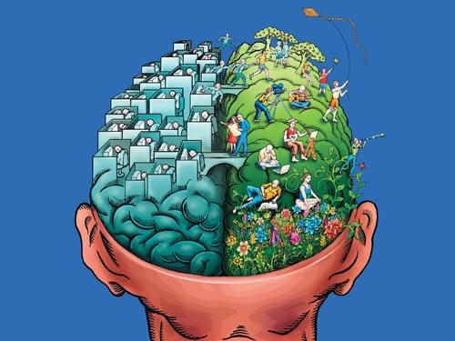 Дві половинки одного мозку в психології