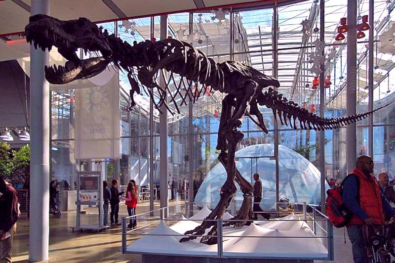 Скелет тиранозавра