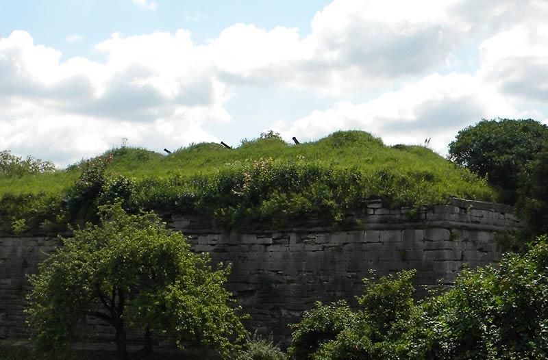 Гармати на стінах замку Золочева
